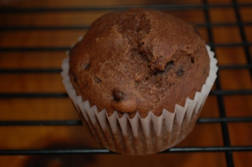 photo of Double Chocolate Muffins