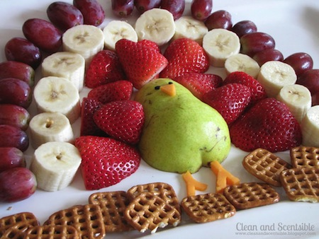 http://photos.happyherbivore.com/2013/11/turkeyfruittray_cleanandscentsible.jpg